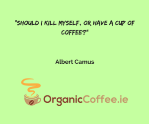 Albert Camus quote